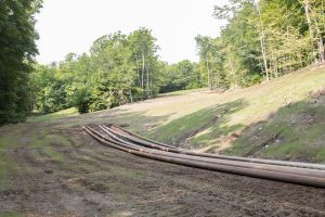 an easier ski trail in the summer snowmaking pipes on it.