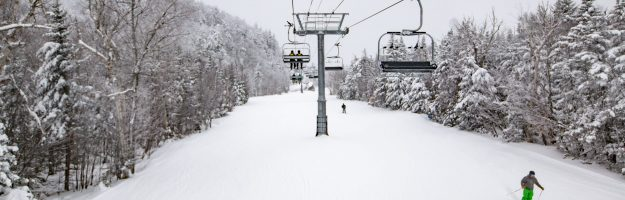 awesome cruise packed packed powder